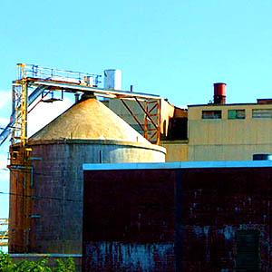 98d11cfee56795fc-mills