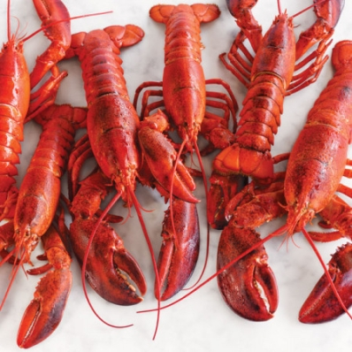 deb646811b4bcc14-just-the-lobsters